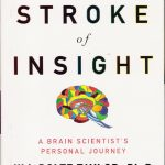 Book_My_stroke_of_insight